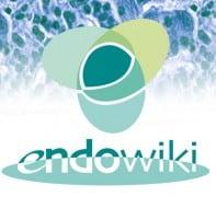 ENDOWIKI, l'enciclopedia on line che aiuta a comprendere meglio le malattie endocrine