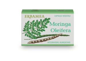 Moringa Oleifera, tutti i benefici della pianta nel nuovo integratore Erbamea