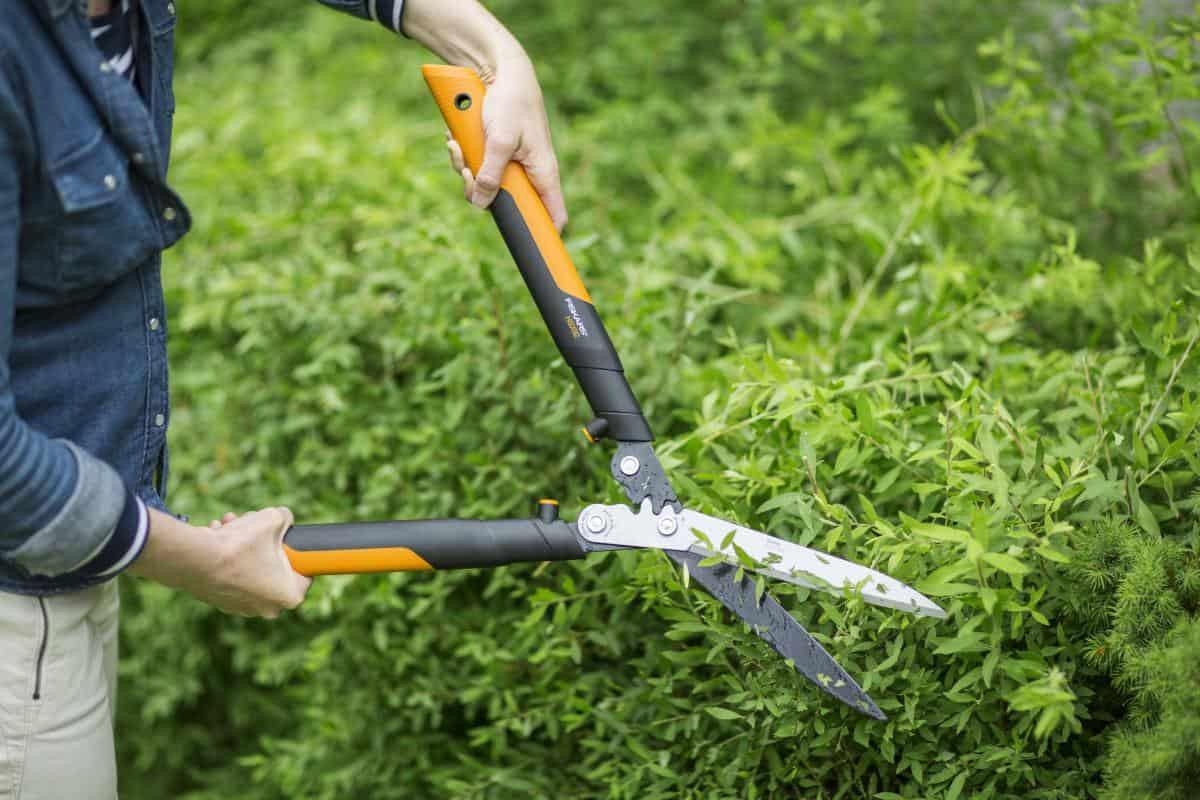 Nasce Fiskars PowerGearX: meno fatica e maggiore efficienza nella cura del giardino