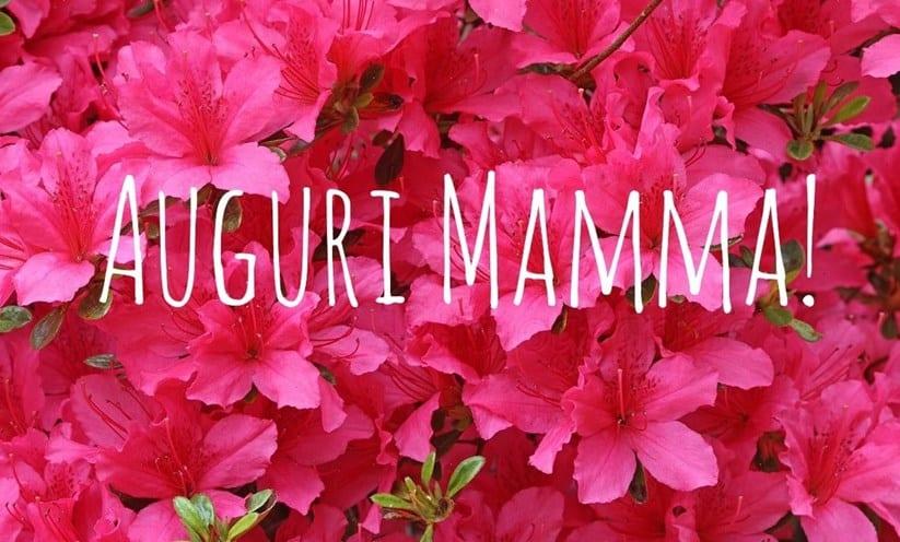 La festa della mamma si avvicina e non sai ancora cosa regalare alla donna più importante della tua vita?