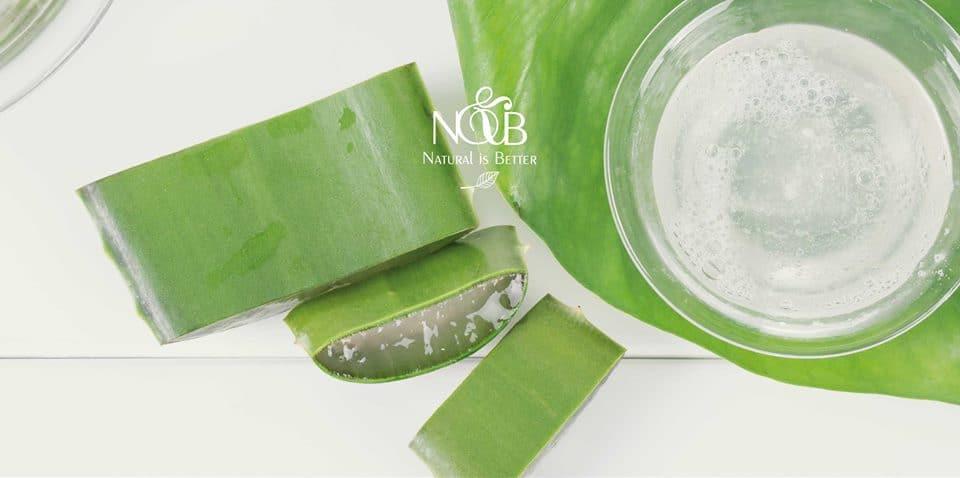 N&B Natural is Better: i nuovi prodotti dall'anima green che proteggono la pelle e l'ambiente