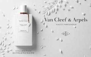 Santal Blanc N°2694IFG, la nuova fragranza di VAN CLEEF & ARPELS
